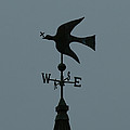 Dove Weathervane by Ernie Echols
