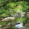 Down By The Creek by Donna Blackhall