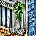 Downspout by Doc Braham
