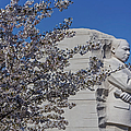 Dr Martin Luther King Jr Memorial by Susan Candelario