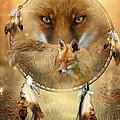Dream Catcher- Spirit Of The Red Fox by Carol Cavalaris