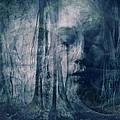 Dreamforest by Gun Legler