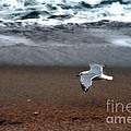 Dreamy Serene Ocean Waves Coastal Scene by Kathy Fornal