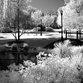 Dreamy Surreal Black White Infrared Landscape Poster by Kathy Fornal