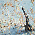 Driftwood Abstract by Betty LaRue