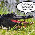 Drop In For Lunch Greeting Card by Al Powell Photography USA