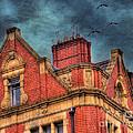 Dublin House Roof Top by Juli Scalzi