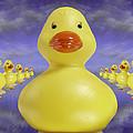 Ducks In A Row 3 by Mike McGlothlen