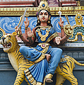 Durga Statue on Hindu Gopuram Print by Tim Gainey