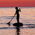 Dusk Float - Sunset Art by Sharon Cummings