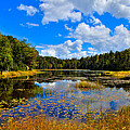 Early Autumn at Fly Pond - Old Forge New York Print by David Patterson