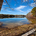 Early Spring On Long Pond by Michelle Wiarda