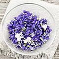 Edible Violets  by Elena Elisseeva