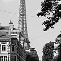 Eiffel Tower Black And White 4 by Andrew Fare