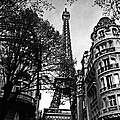 Eiffel Tower Black And White by Andrew Fare