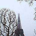 Eiffel Tower - Paris France - 011318 by DC Photographer