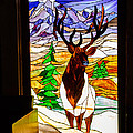 Elk Stained Glass Window by Robert Bales