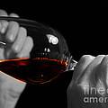 Enjoying Wine by Patricia Hofmeester
