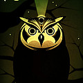 Enlightened Owl by Milton Thompson