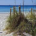 Enter The Beach by Susan Leggett