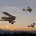 Evening Flight Print by Pat Speirs