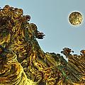 Event Horizon.   by Tautvydas Davainis