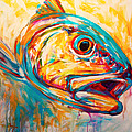 Expressionist Redfish Print by Mike Savlen