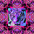 Eyes of The Bengal Tiger Abstract Window 20130205p0 Print by Wingsdomain Art and Photography