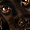 Eyes by Veronica Minozzi
