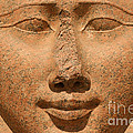 Face Of Hathor by Stephen & Donna O'Meara
