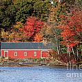 Fall At The Mill by Jayne Carney