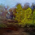 Fall Color by Dwayne Gresham