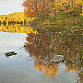 Fall Colors On Taylor Pond Mount Vernon Maine by Keith Webber Jr