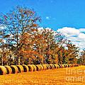 Fall Hayfield by M Glisson