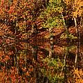 Fall Reflections by Karol Livote