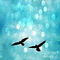 Fantasy Surreal Ravens Flying - Aquamarine Blue Bokeh Sparkling Lights by Kathy Fornal