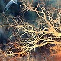 Fantasy Surreal Trees And Seagull Flying by Kathy Fornal