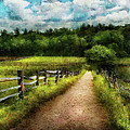 Farm - Fence - Every journey starts with a path  Print by Mike Savad