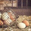 Farm Fresh Eggs by Edward Fielding