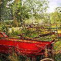 Farm - Tool - A Rusty Old Wagon by Mike Savad