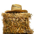 Farmer Hat On Hay Bale by Olivier Le Queinec