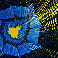 Field Of Force - Yellow Blue And Black Abstract Fractal Art by Matthias Hauser