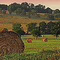 Field Of Hay by Steven  Michael