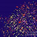 Fireworks by Elizabeth Blair-Nussbaum