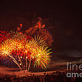 Fireworks Finale by Robert Bales