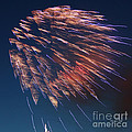 Fireworks Series I by Suzanne Gaff