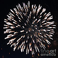 Fireworks Series X by Suzanne Gaff