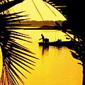 Fishing In Gold by Karen Wiles