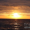 Fishing Into The Sunrise by John Telfer