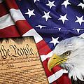 Flag Constitution Eagle by Daniel Hagerman